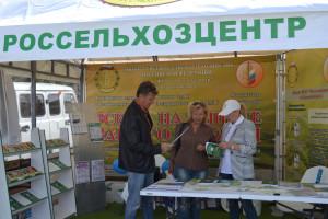 Курская-Коренская-ярмарка