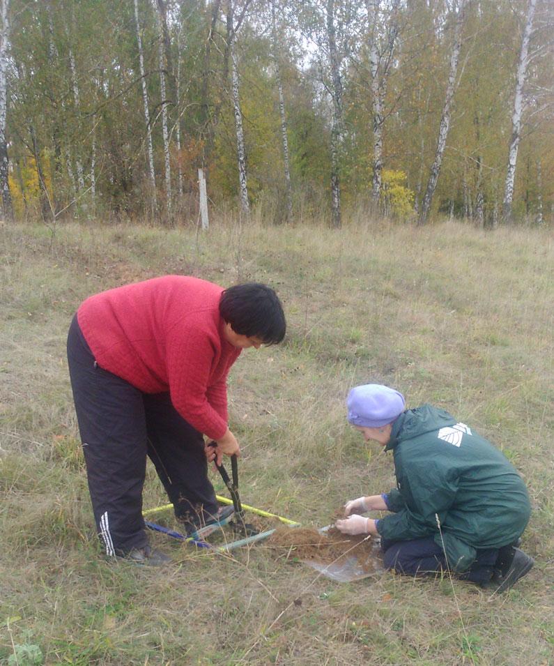 Фитосанитарный мониторинг на землях федерального значения
